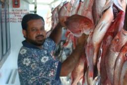 Galveston Fishing 2010