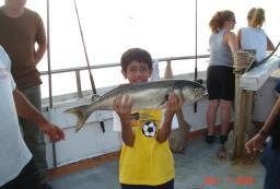 NY Fishing